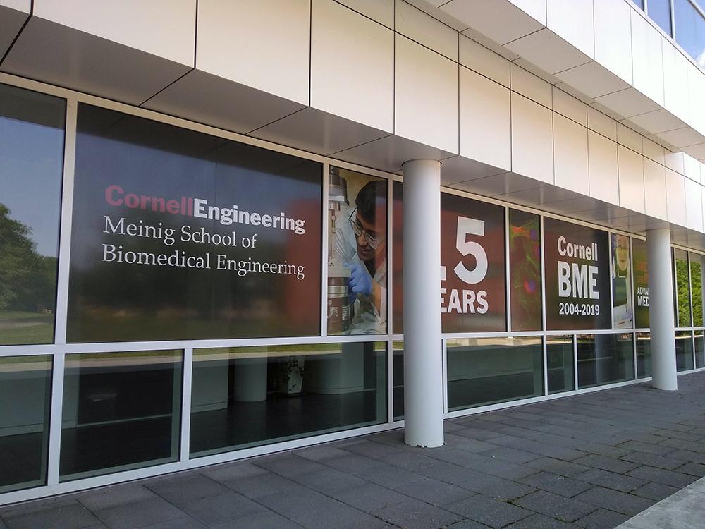 Nancy E. and Peter C. Meinig School of Biomedical Engineering